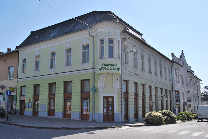 Borosov dom